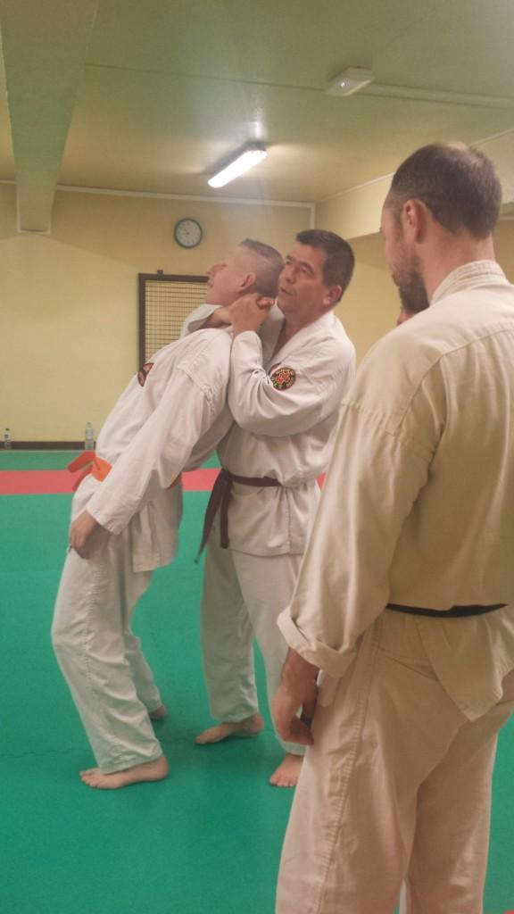 Nihon Tai Jitsu novembre 2015 (10)