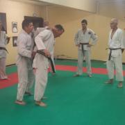 Nihon Tai Jitsu novembre 2015 (11)