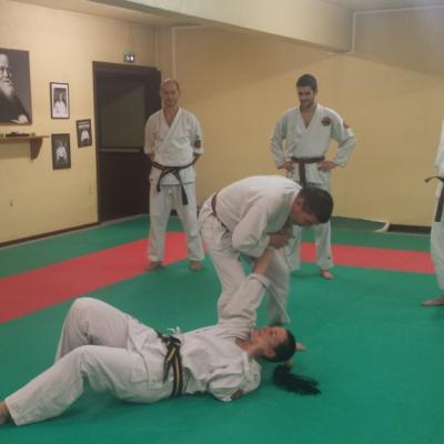 Nihon Tai Jitsu novembre 2015 (12)