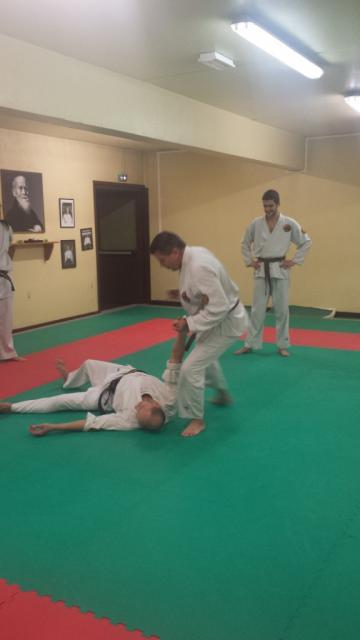 Nihon Tai Jitsu novembre 2015 (13)