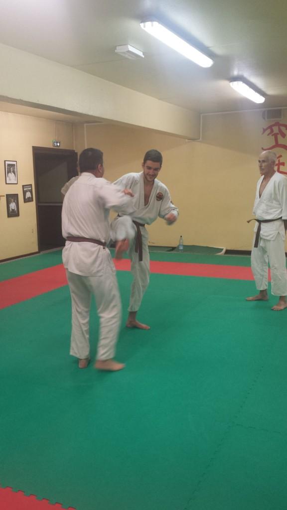 Nihon Tai Jitsu novembre 2015 (14)