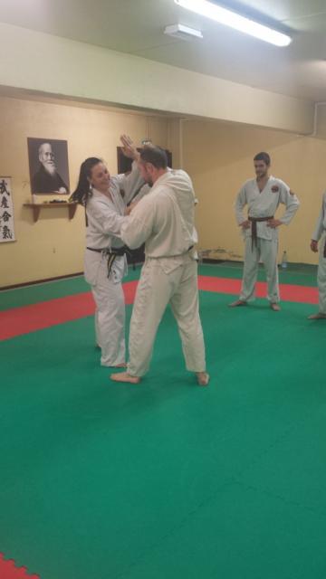 Nihon Tai Jitsu novembre 2015 (18)