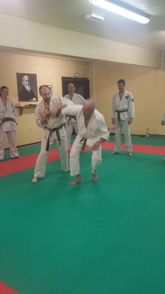 Nihon Tai Jitsu novembre 2015 (20)