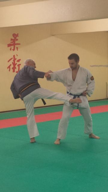 Nihon Tai Jitsu novembre 2015 (24)