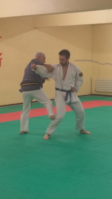 Nihon Tai Jitsu novembre 2015 (25)