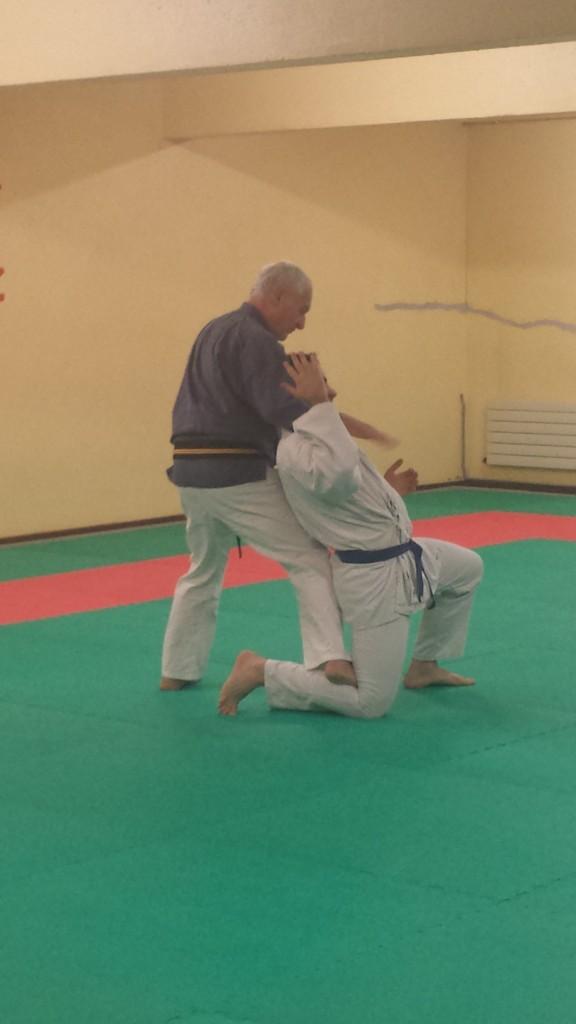 Nihon Tai Jitsu novembre 2015 (26)