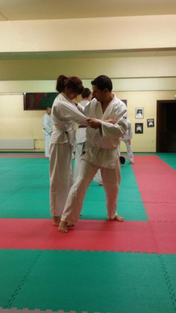Nihon Tai Jitsu novembre 2015 (28)