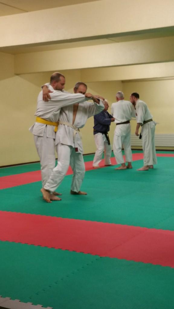 Nihon Tai Jitsu novembre 2015 (29)