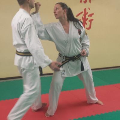 Nihon Tai Jitsu novembre 2015 (30)