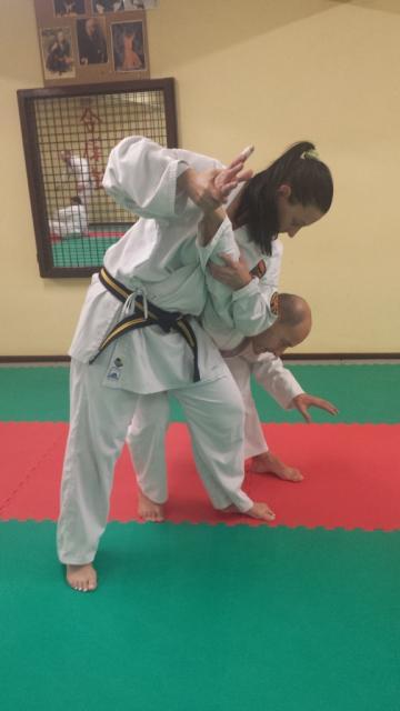 Nihon Tai Jitsu novembre 2015 (31)