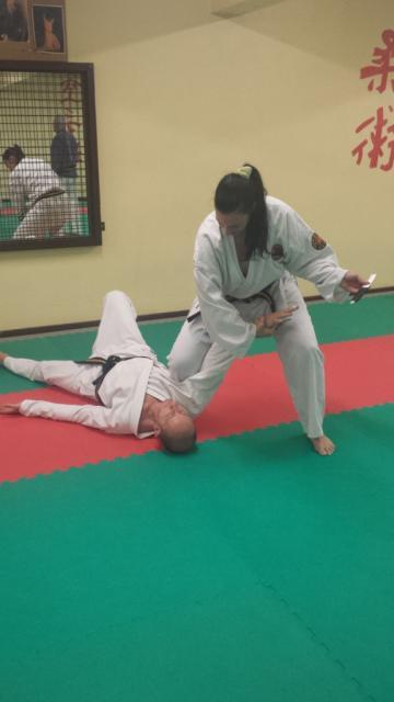 Nihon Tai Jitsu novembre 2015 (34)