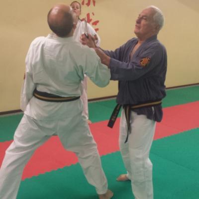 Nihon Tai Jitsu novembre 2015 (35)
