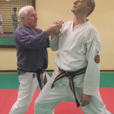 Nihon Tai Jitsu novembre 2015 (36)