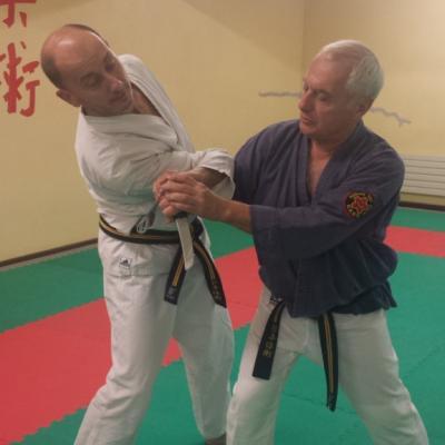 Nihon Tai Jitsu novembre 2015 (37)