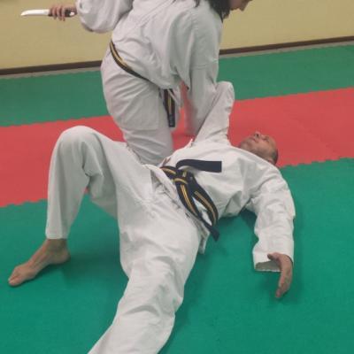 Nihon Tai Jitsu novembre 2015 (38)