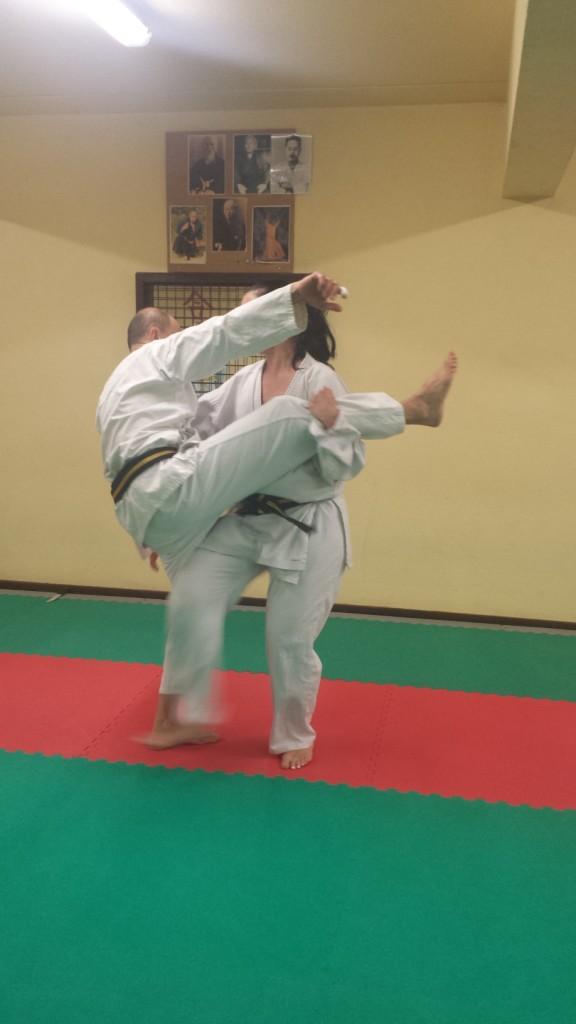 Nihon Tai Jitsu novembre 2015 (40)