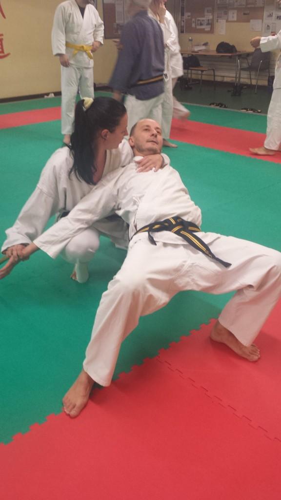 Nihon Tai Jitsu novembre 2015 (43)