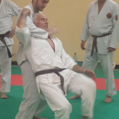 Nihon Tai Jitsu novembre 2015 (8)