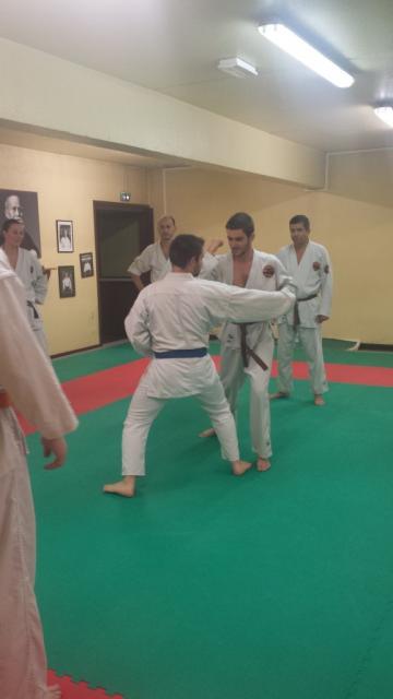 Nihon Tai Jitsu novembre 2015 (9)