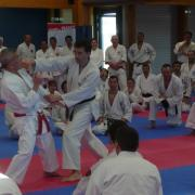 stage experts Montpellier 2015 (2)